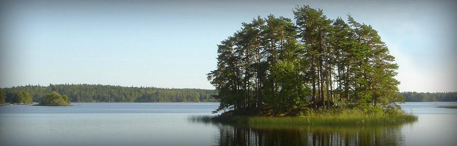Södra Åsnens Fibernät